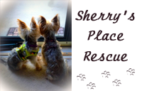 Sherry's Place Rescue